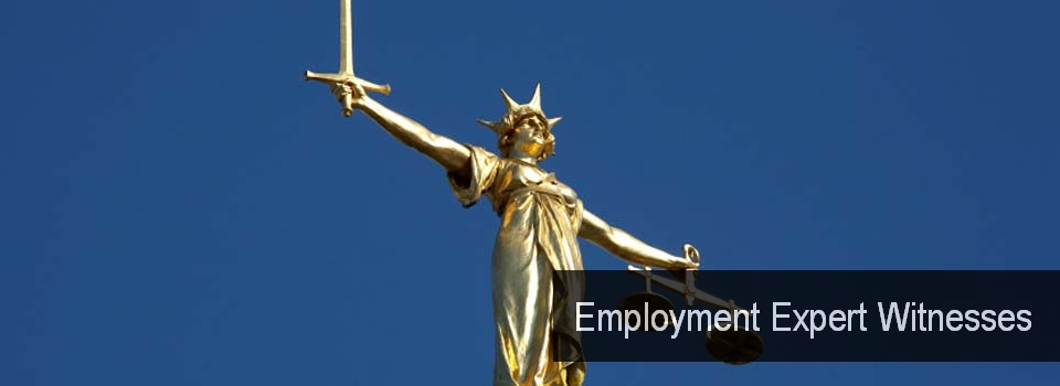02_Employment_Expert_Witnesses